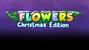 Flowers™ Christmas_Banner