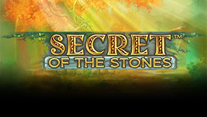 Secret-of-the-Stones_Banner