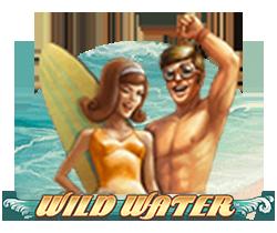 Wild-water_small logo