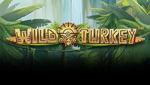 Wild-Turkey_Banner