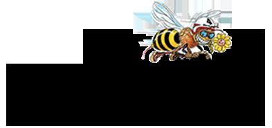 Shu-bi-dua_logo