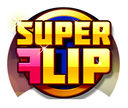 Super-Flip_small logo