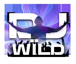 DJ-Wïld_small logo-1000freespins.dk