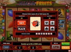 Ninja Fruits slotmaskinen SS-09