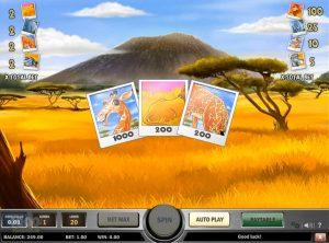 Photo Safari slotmaskinen SS-09