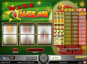 Wild-Melon_SS-01