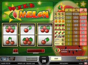 Wild-Melon_SS-04