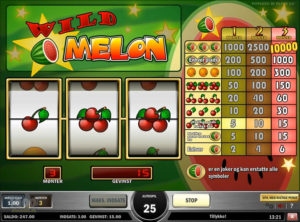 Wild Melon slotmaskinen SS-05