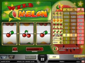 Wild-Melon_SS-06
