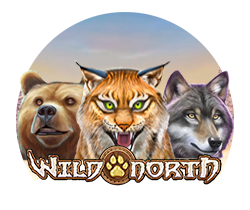 Wild-North_playgame-1000freespins.dk