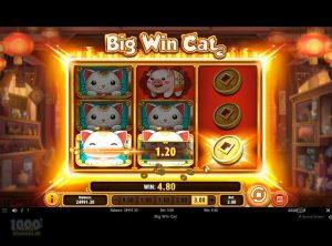 Big-Win-Cat_slotmaskinen-08