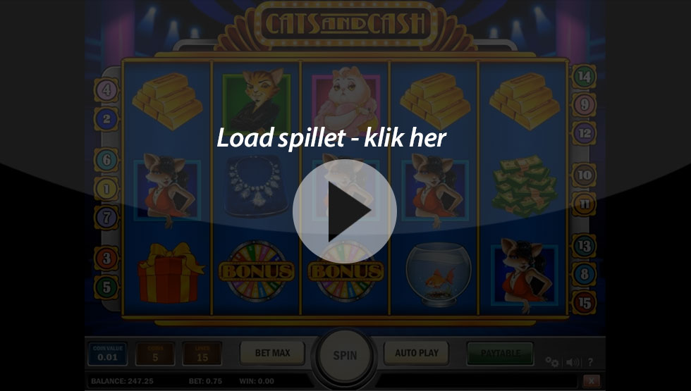 Cats-and-Cash_Box-game-1000freespins